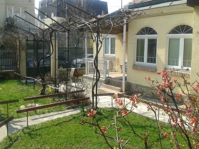 Special for nature lovers! - Belgrade - House
