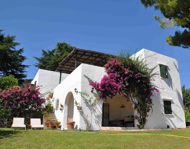 Enchanting Mediterranean Sea Villa San F. Circeo - San Felice Circeo - Hus