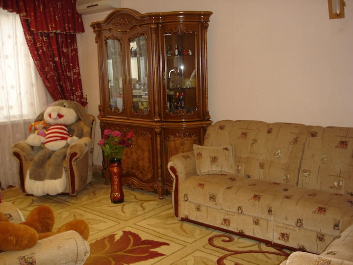 Charming Apartment in Khujand