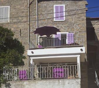 House Lilac - Pila-Canale