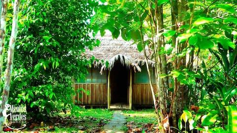 Naineku lodge( selva lodge)
