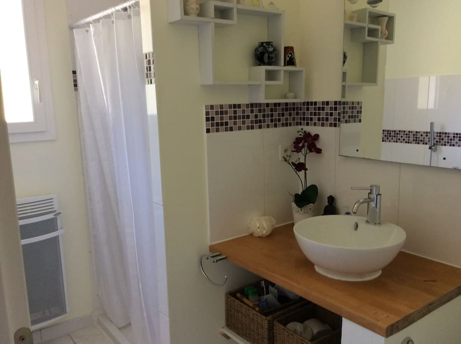Private bathroom with separate walk-in shower