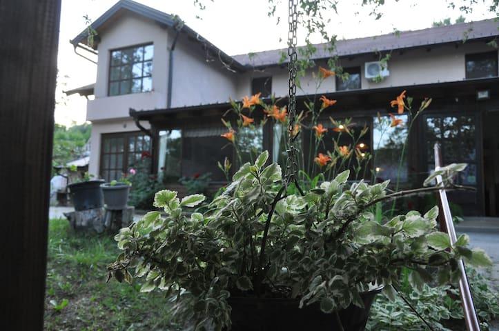 Rooms Čarda Šebešfok, Bezdan