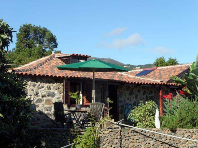 Finca Cueva del Viento - Icod de los Vinos - House