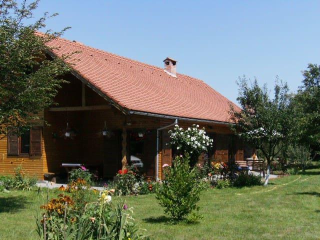 Grande Cabane dans les Carpates,  - Avrig - Cabaña
