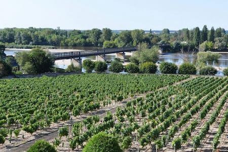 Vue sur la Loire et les vignes