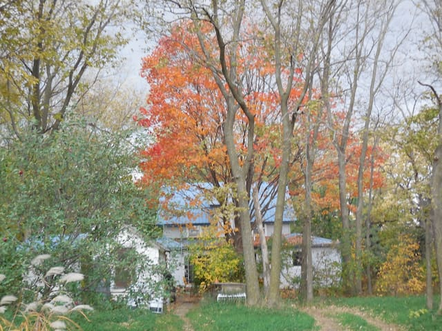 Back yard view of our house in the fall.