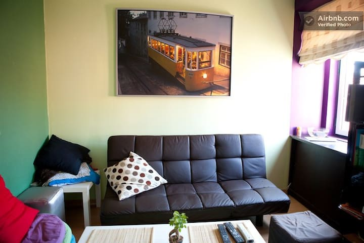 Private room, great flat in center!