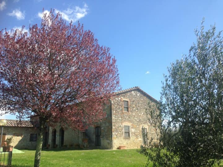 Your Farmhouse in the Tuscan countryside