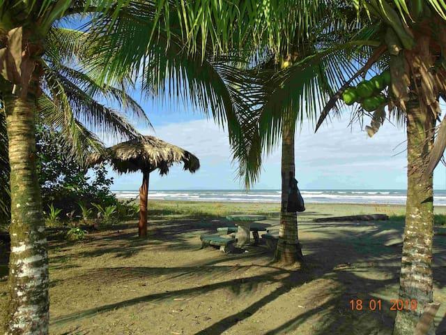 Caribbean Coconut - Double Room