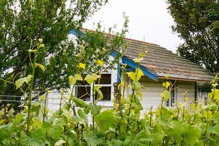 Glass House - Studio on vineyard - Martinborough