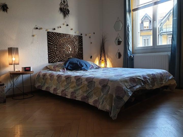 Chambre dans superbe appartement proche du lac