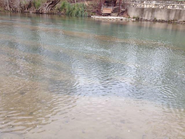 Guadalupe River Ponderosa Place