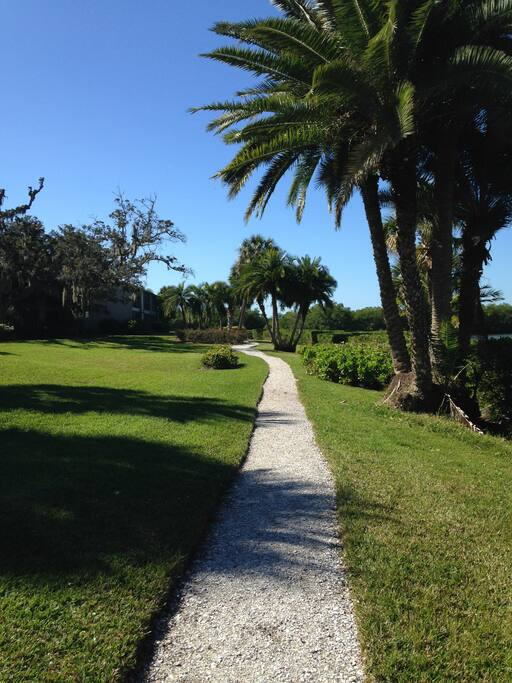 one of the many bayside walks among palms and fruit trees