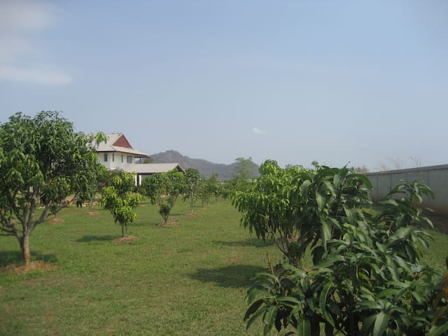 Mountain view fruit farm. - Pak Chong - Dom