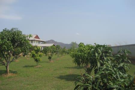 Mountain view fruit farm. - Pak Chong