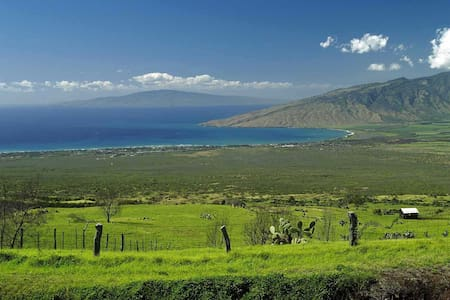 Upcountry - Clean, Quiet, and Close to Everything! - Makawao