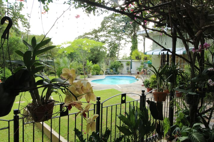 POS Oasis 1BR Apt, garden, pool, kitchen, wifi - Port of Spain - Flat