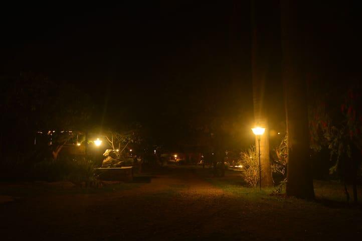 (URL HIDDEN) Accomodation With A Diff - Dehradun - House