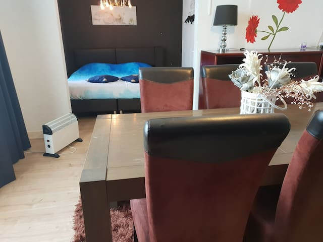 Nice big apartment in city center The Hague