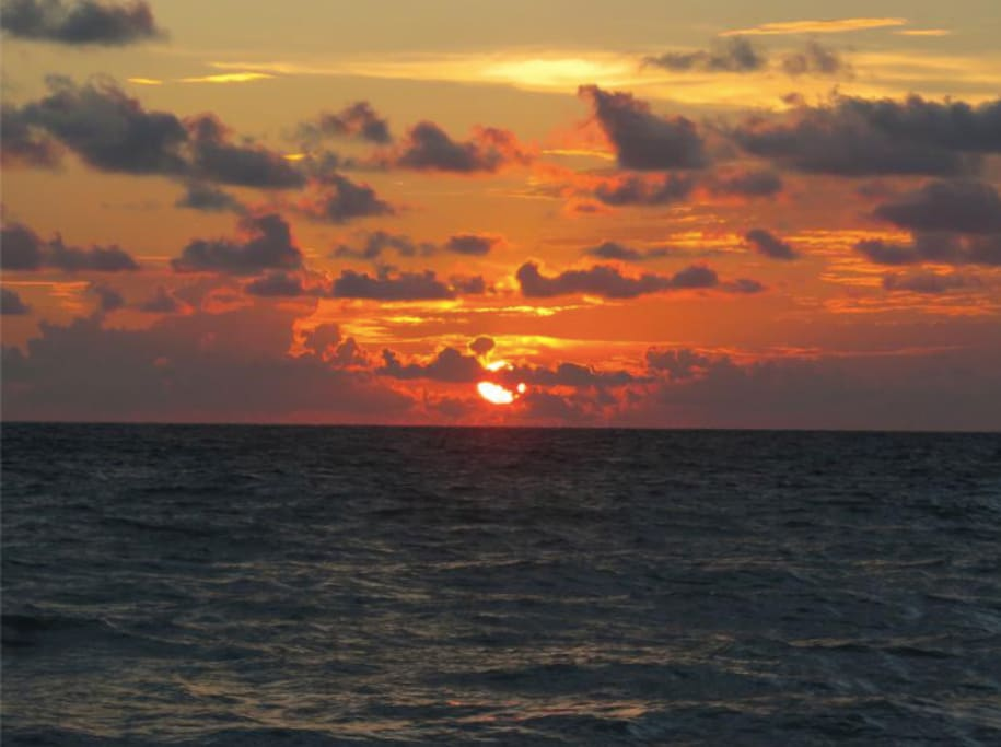 You cannot beat a Gulf sunset on Florida's west coast!