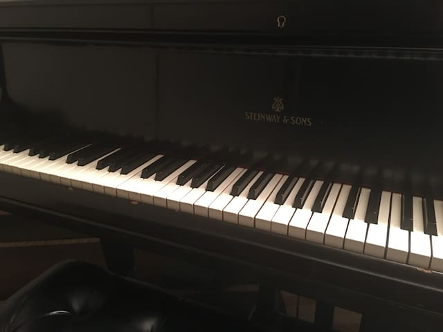 Steinway Grand events ok fully equipped free wifi - Musashino - Daire