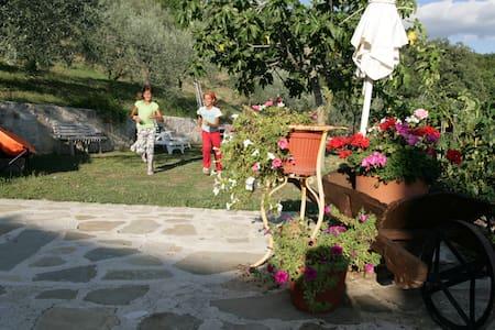 Bed & Breakfast Casa Lisetta - Valtopina