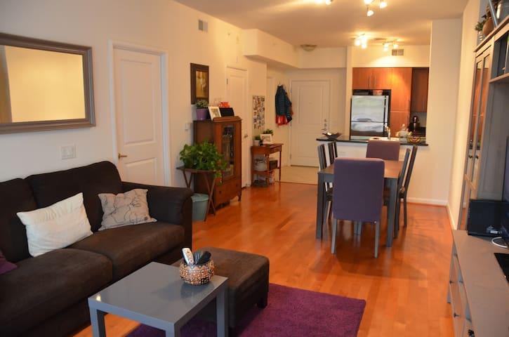 Cute & Cozy 1BR in NOVA / 3StopsFromDC - Arlington - Lägenhet