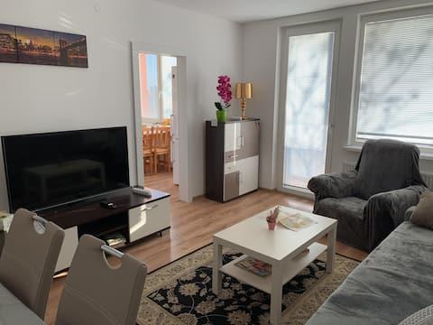 Apartment T8