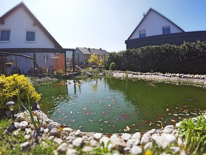 Mosel-Secret - Ferienwohnung in Kinheim / Kröv