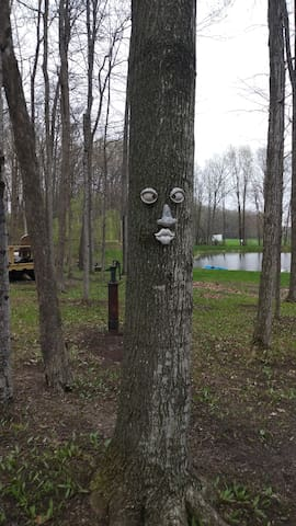Even the trees have character!
