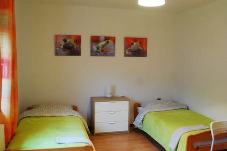 Budget Homestay. 3rd Room - Idrsko - Bed & Breakfast