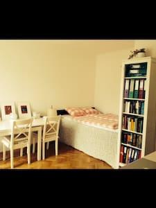 Cosy One-Room-Flat - Wenen