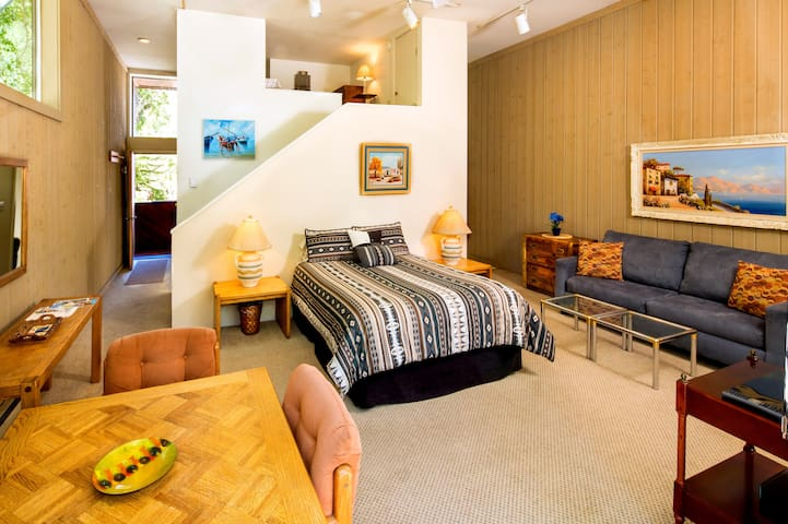 Downtown Aspen Studio w/Loft. CSL#4
