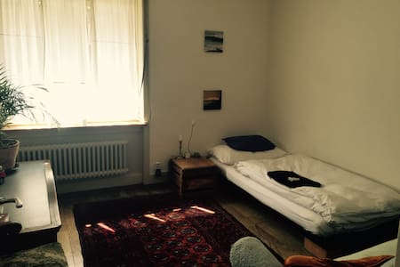 Your room in the middle of Zurich - Apartemen