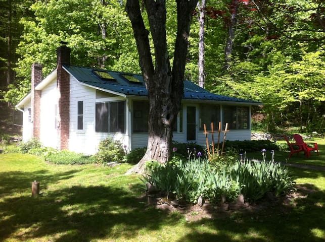 Charming Catskills Cottage - Mount Tremper - Blockhütte