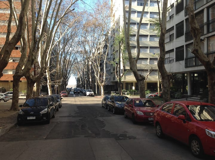 Apartamentos del sur /MASSINI 3/