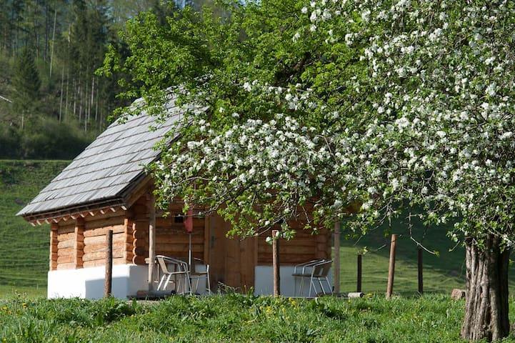 Blockhäuschen am Biohof und Reiterhof Laussabauer - St. Gallen - Blockhütte