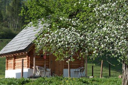 Blockhäuschen am Biohof und Reiterhof Laussabauer - St. Gallen