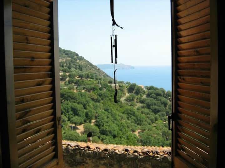 Camera singola panoramica