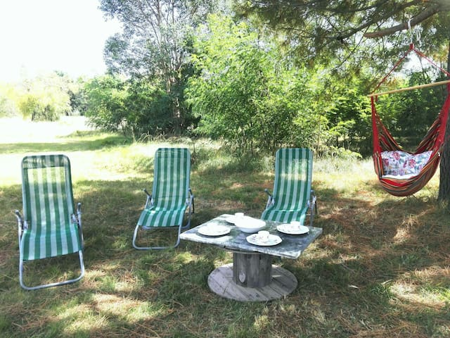 appartment in a beautyfull parc, 3km from de beach