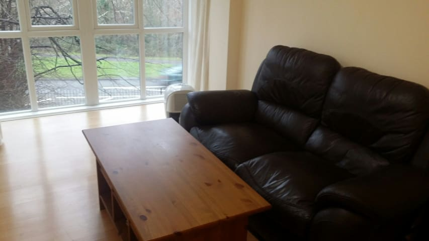 Comfortable Double bedroom - Crawley - Apartament