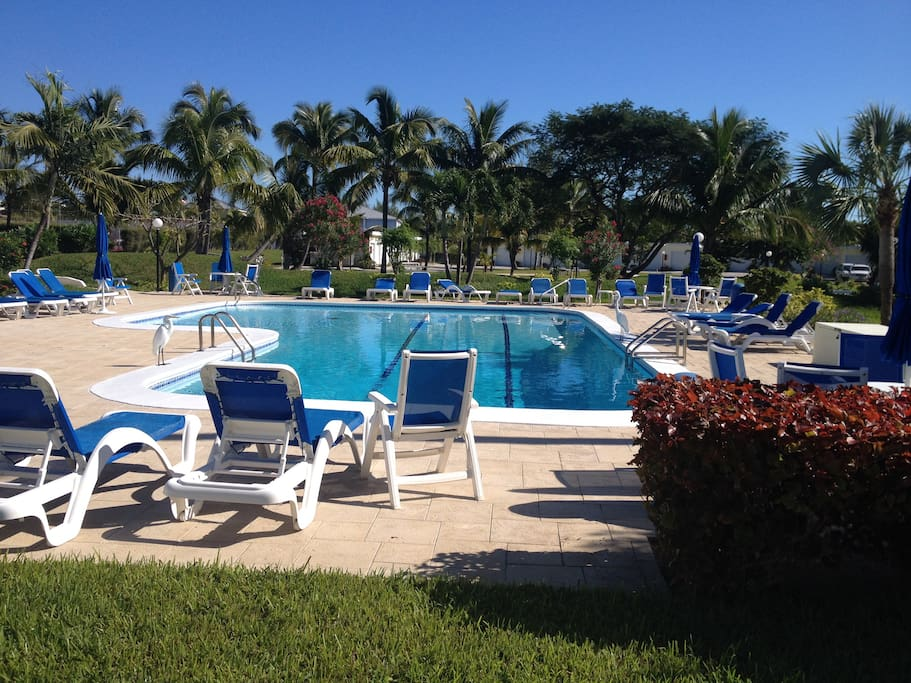 Heated Pool with new expanded deck and new chairs, Tables and umbrellas