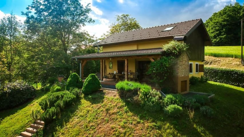 Green Hills Cottage with magnificent view