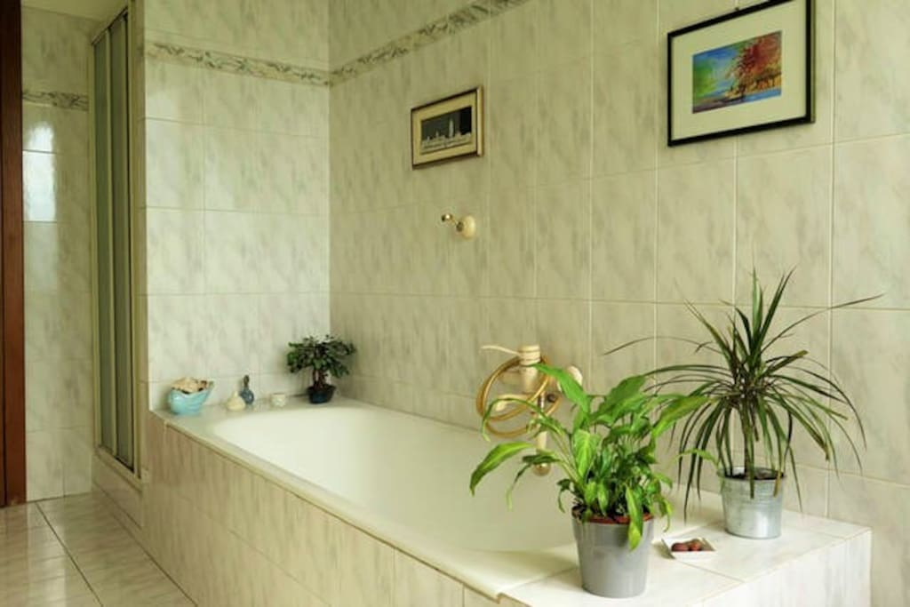 Exclusive bathroom shower side)