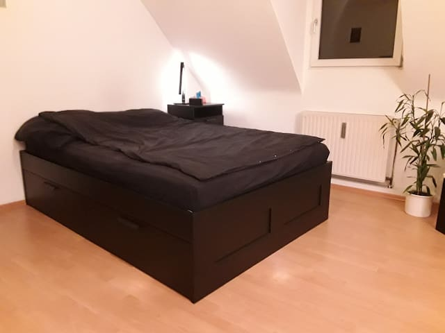 Flat near Rhine (15min to Messe, 20 main station)