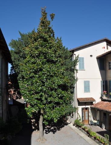 Antica Magnolia - apartment - Cherasco - Apartment