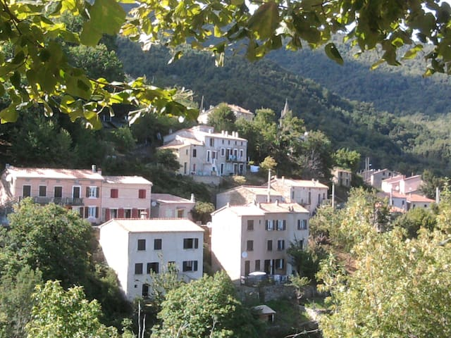 small house of village - San-Gavino-di-Fiumorbo - Appartement