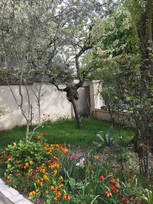 Jardin à l'entrée principale