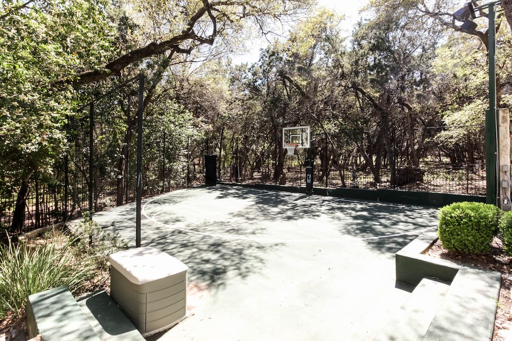 Half Court Basketball Court with Dr Dish Rebounding System